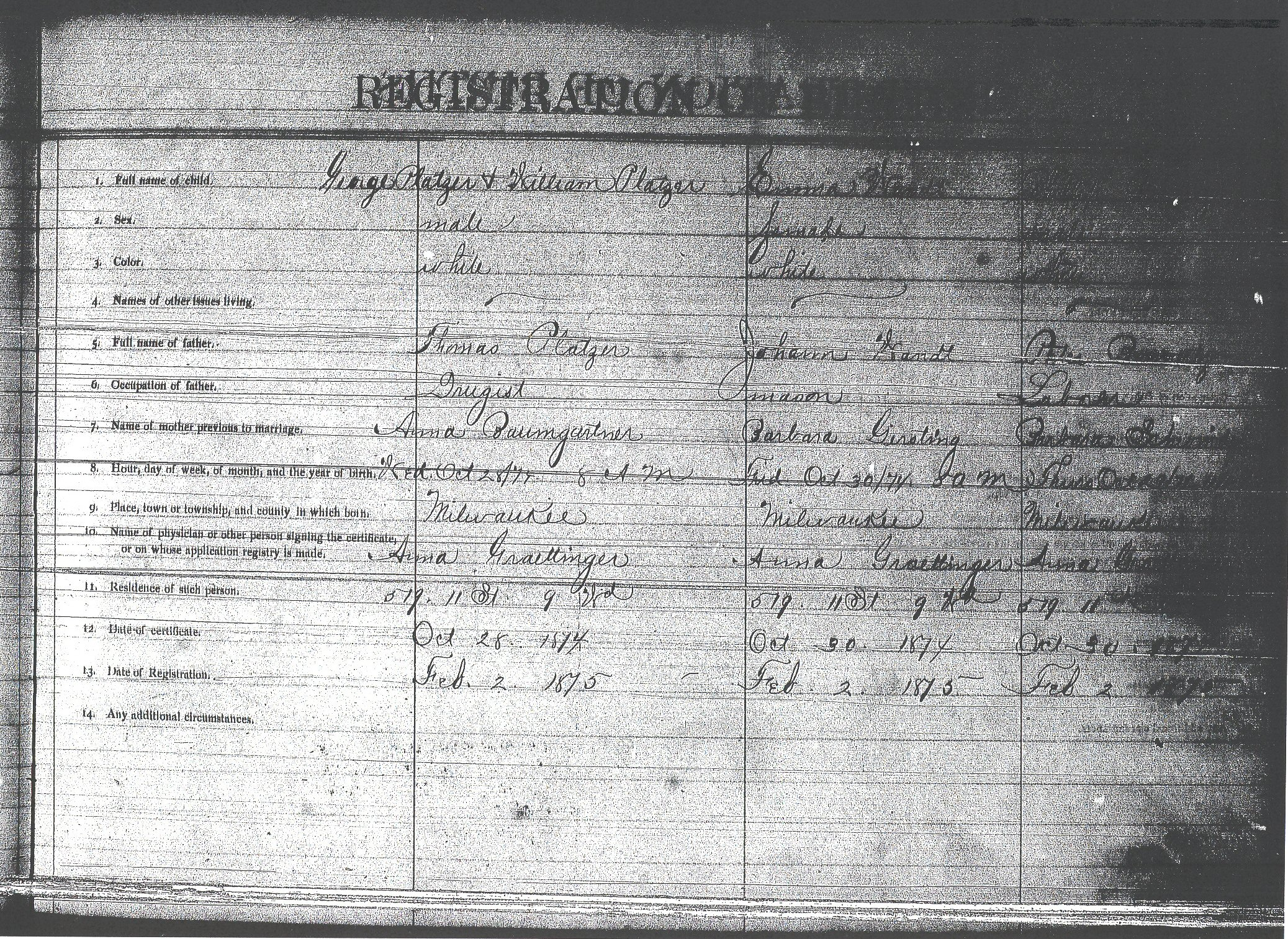 Birth records for wandt genealogy 1876 birth record of emma wandt aiddatafo Image collections