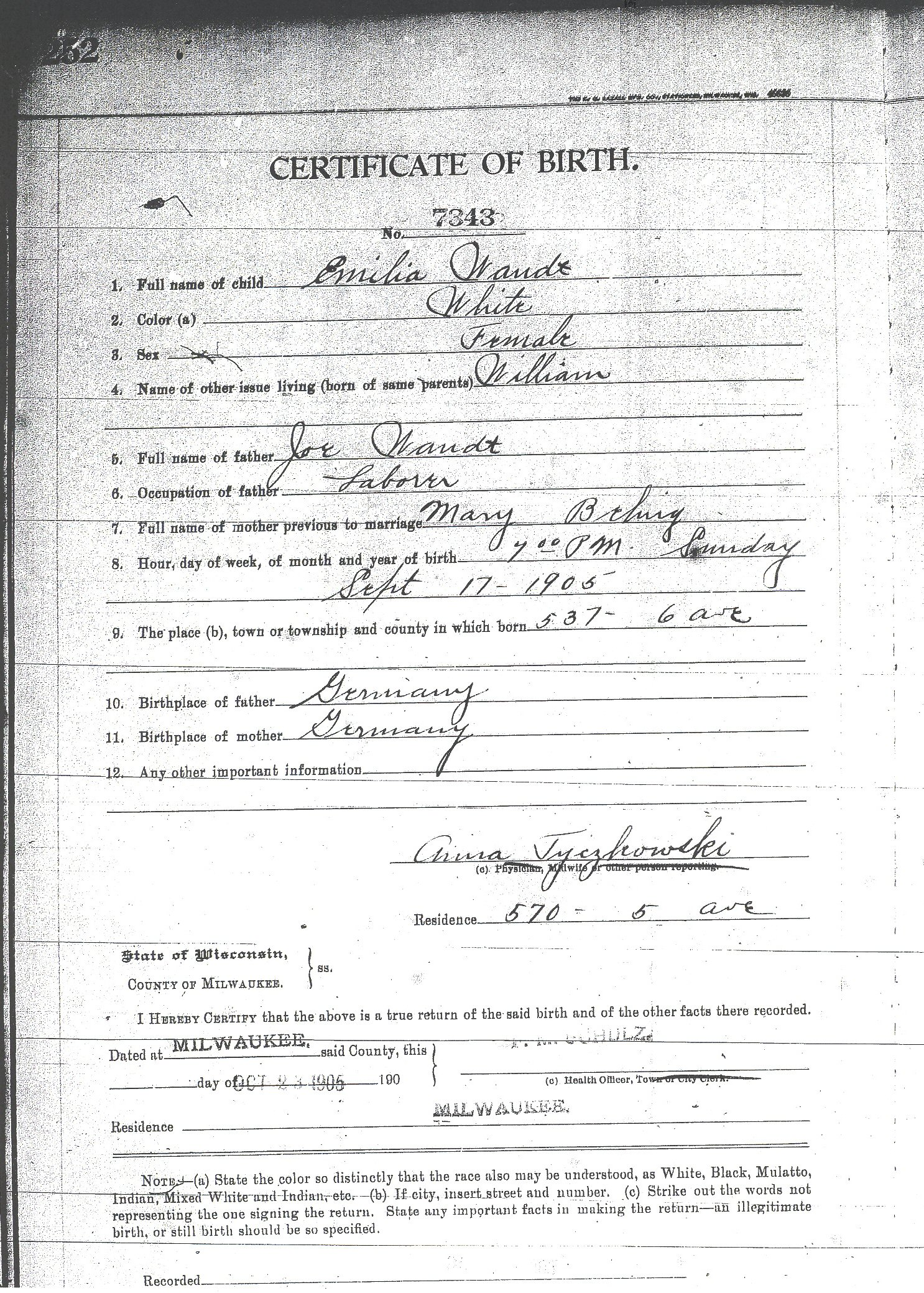 Birth Records For Wandt Genealogy